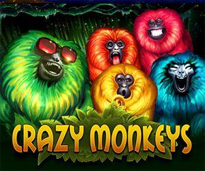 Crazy Monkeys online slot review