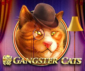 Gangster Cats online slot review